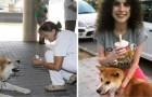 Ce chien a attendu six jours hors de l'hôpital pour la plus douce des raisons