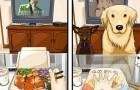La vie avant et après l'arrivée d'un chien: voici les adorables conséquences de l'adoption