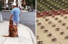 26 Bilder aus dem Internet, die uns bewegen und erstarren lassen