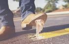 Vietato masticare la gomma: ecco alcune tra le leggi più assurde in vigore nel mondo