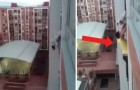 A dog is hanging from a high-rise balcony railing ...