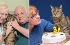 Ha soffiato ben 31 candeline: ecco Nutmeg, il gatto più vecchio del mondo