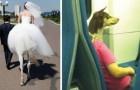 14 photos normales que le hasard et la perspective ont rendu phénoménales!