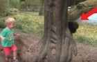 A little boy and a young gorilla interact!