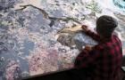 Er arbeitet drei Jahre lang mit Feder und Tinte... das Resultat ist ein MEISTERWERK