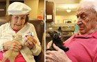 Gattini orfani dentro una casa di riposo: una collaborazione dai risultati entusiasmanti