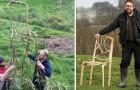 Cultiver ... les meubles : Voici l'incroyable idée de cet artiste