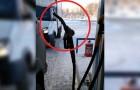 Il fait si froid que ça en Russie? Assez pour que des choses bizarres comme celle-ci se produisent!