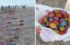 Un typhon renverse un cargo : une île entière est recouverte d'œufs en plastique