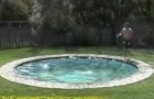 What do you think about a hidden swimming pool?