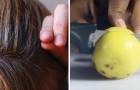 Lotta ai capelli bianchi: bastano 2 ingredienti per aiutare le cellule del cuoio capelluto a lavorare bene