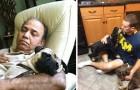 Questi papà non volevano assolutamente un cane in casa. Poi i figli li hanno trovati così
