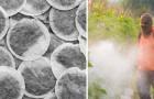 Giftige Substanzen im Tee: Eine Studie zeigt, welche Marken weniger Pestizide enthalten