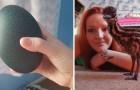 Elle achète sur internet un œuf à 30 $... avant d'accueillir un bel oiseau exotique à la maison!
