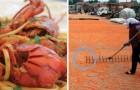 Gamberi colorati: ecco le immagini inquietanti di come vengono resi