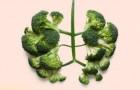 10 légumes alliés de l'organisme qui vous feront rester en bonne santé