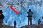 Watch a part of an enormous glacier collapse! Epic!