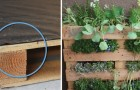Come trasformare un pallet in un giardino verticale perfetto anche per un balcone