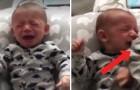 Le bébé veut désespérement sa mère: le papa le calme en 1 SECONDE avec cette méthode
