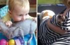 21 Szenen des ganz normalen Wahnsinns wenn Kinder und Tiere unter dem gleichen Dach leben