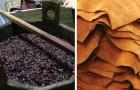 Voici le premier cuir 100% naturel qui ne provient PAS d'animaux