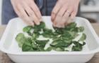 Non solo pesto: 10 modi per utilizzare le foglie di basilico dentro e fuori la cucina