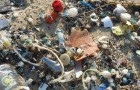 Not even this remote island can escape plastic litter! Incredible!