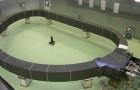 L'Italia completa il primo dei 10 super magneti per raggiungere il sogno della fusione nucleare