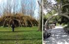 7 spectaculaires œuvres d'architecture créées avec des arbres vivants