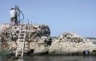 Wissenschaftler entdecken das Geheimnis, das es den römischen Hafenstrukturen ermöglicht hat, so lange Zeiten zu überdauern