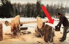 Hij begint boomstammen te zagen met een kettingzaag... het resultaat is een UNIEK bankje!