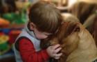 25 photos qui illustrent pourquoi chaque enfant devrait grandir avec un ami à quatre pattes.