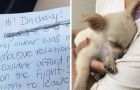 Why was this adorable puppy abandoned at an airport?!