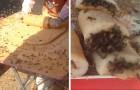 Ce vendeur ambulant prépare des desserts entouré de centaines d'abeilles, comme si rien n'était