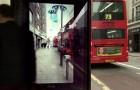 Un arrêt d'autobus plein de surprises