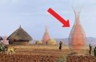 Deze door een italiaan ontworpen toren verzamelt 100 liter water per dag en lest de dorst van de afrikaanse bevolking