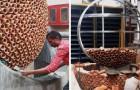 Dei designer indiani creano un climatizzatore che funziona senza energia elettrica