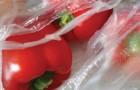 Alla fine dell'anno i sacchetti dell'ortofrutta saranno vietati: al loro posto buste bio a pagamento
