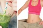 Ecco quali sono i 4 ingredienti che ti faranno perdere peso più velocemente