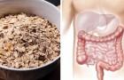 Ecco cosa mangiano a colazione le persone che hanno uno stile di vita salutare