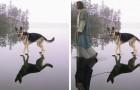 Con e senza Photoshop: ecco i fotomontaggi più spassosi del web