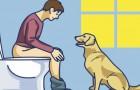 Si votre chien vous suit aux toilettes, ne l'ignorez pas: voici ce qu'il essaie de vous dire
