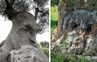 20 alberi che sembrano tutt'altro e che hanno costretto i passanti a dare una seconda occhiata