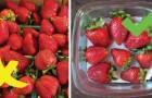 17 dritte per mantenere fresche più a lungo frutta e verdura