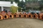Cette commune italienne a installé des niches de quartier pour protéger les animaux errants du froid