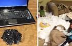 25 foto che dimostrano che un bambino lasciato solo è una forza davvero distruttiva