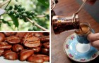 Irrinunciabile caffè: nel XVI secolo non disporne a sufficienza poteva metterti nei guai
