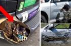22 mensen die hun auto op een originele manier gepersonaliseerd hebben