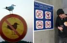 18 ribelli che hanno eroicamente trasgredito le regole