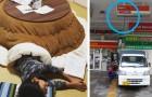 16 comode abitudini giapponesi che dovrebbero esistere in tutto il mondo